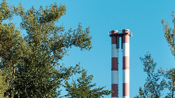 """""""Bonos verdes"""" para que las empresas financien la transición ecológica impulsada por el Gobierno"""